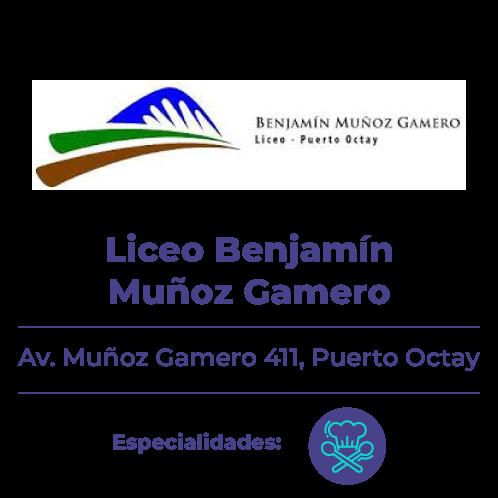 liceo-muñoz-gamero